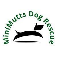 Minimutts Logo